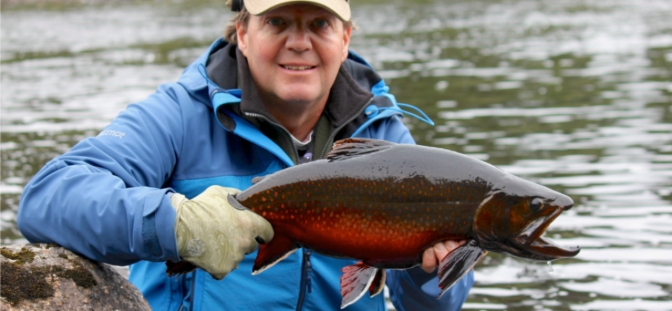 Catch and release one of Minipi's BIG brookies!
