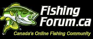 Fishing Forum